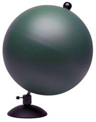 0000037_didakticki-globus-30-cm_415.jpeg