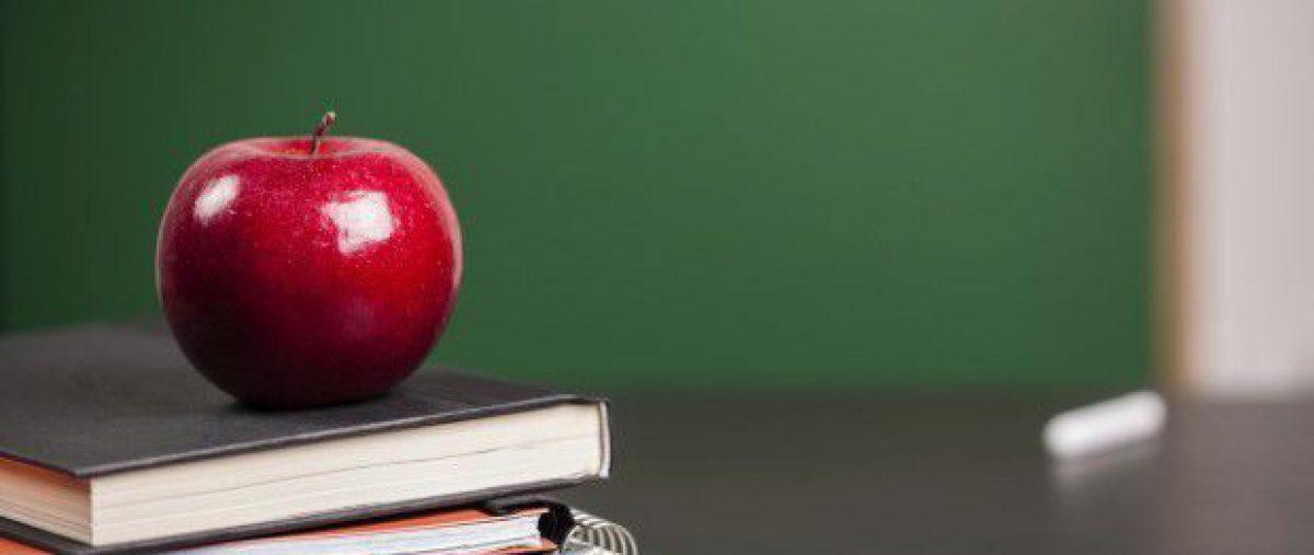 Suvremeni nastavnik u odgoju i obrazovanju